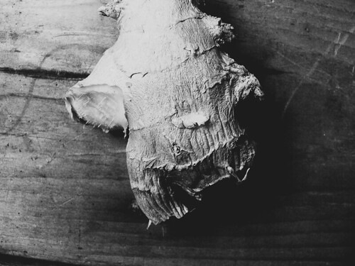 ginger root, b&w