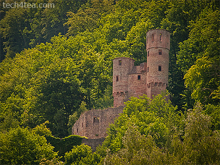 Yet another of four castles in Neckarsteinach, taken with an Olympus E450