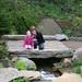hidden_garden_20110508_16209