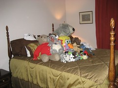 Our bed for the night. (01/19/2008)