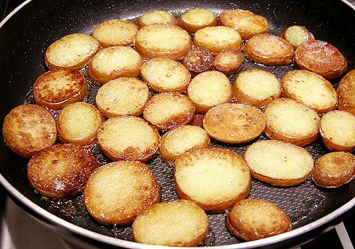 鹿肉佐 Fondant 馬鈴薯和香蒜野菇-080508