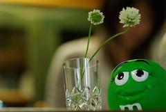花瓶にしちゃうか?(countdown 7)