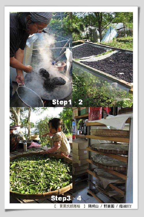 野蔓園─蔭油DIY(接菌)