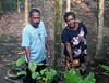 Pot plants (Mangiwau) Tags: new woman plants man west garden indonesia guinea couple gardening pot papua meri jaya indigenous barat irja potplants sarmi irian papuan papouasie papuans beneraf