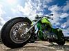 Harley under the sky (Paco CT) Tags: sky verde green spain calafell harley cielo moto motorcycle catalunya 2008 davidson hdc santsalvador elvendrell ltytr2 ltytr1 pacoct xviiiinternationalmeetingharleydavidson elvendrell08