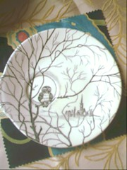 owl plate (tallulahtrifles) Tags: kitsch thrift owl find bargain charityshop