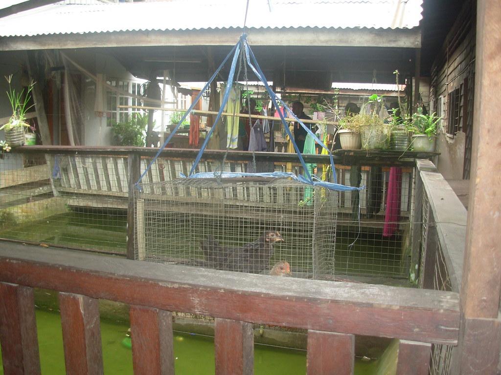 Sarawak-Belaga-LHouses (173)