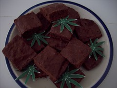 The brownies we made for the party (legogrrl4) Tags: birthday family party music paper 60s chocolate graduation tie pot homemade dye marijuana sixties brownies hemp