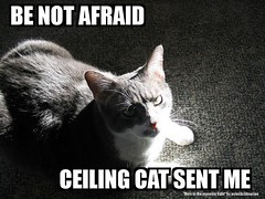BE NOT AFRAID - CEILING CAT SENT ME