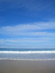 CIMG0300 (Queenbean79) Tags: beach camels portmacquarie