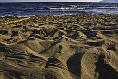 only a sandy beach (Francesco [francepics]) Tags: beach sand nikon toscana tamron spiaggia ansedonia sabbia maremma feniglia 17mm aplusphoto diamondclassphotographer flickrdiamond d40x
