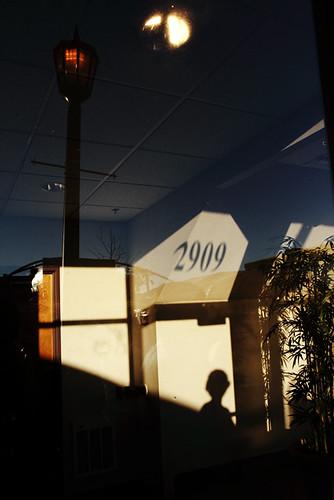 2909 6956