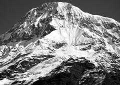Mt Changuch (6322 m.) Indian Himalaya, Pindari valley (mariano capogrossi) Tags: india mountain ice high glacier cerro uttaranchal monte himalaya mariano hielo cima pindari capogrossi changuch worldtrekker nandadeviarea