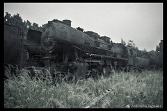 Locomotive graveyard (Martino Zegwaard ~ over 10 million hits, thanks!) Tags: old urban building 20d abandoned graveyard canon photography decay exploring neglected trains exploration martino decayed decaying locomotives urbanexploring ue urbex mmgzegwaard