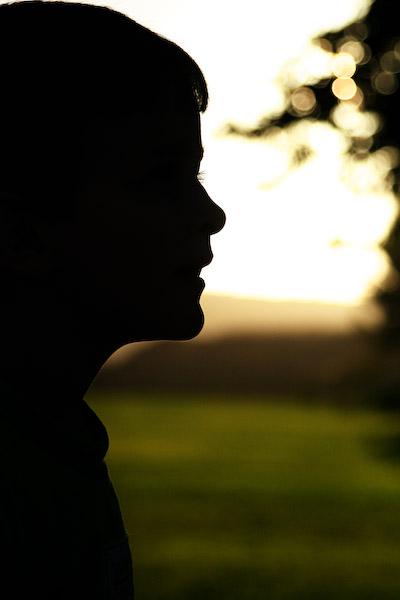 Twilight park silhouettes3
