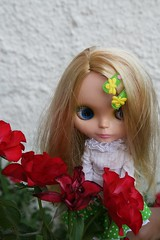 Summer roses for Greta