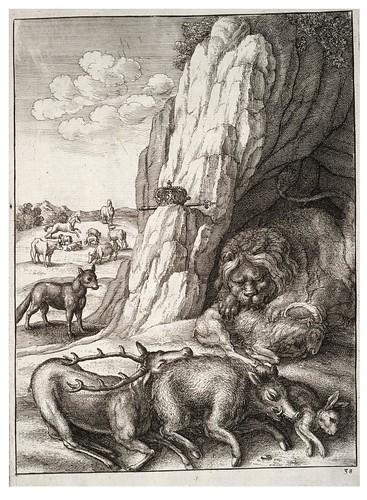 06- El leon enfermo