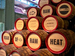 Interactive exhibits in the Guinness Storehouse