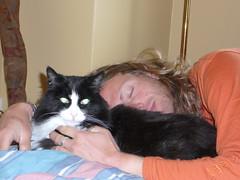 Harry y Sylvester durmiendo una siesta