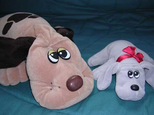 Cute Puppies And Rabbits. but Cute - Pound Puppies