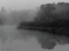 Fox River (OneEyedJax) Tags: trees mist water fog reflections river haze foxriver soe abigfave theperfectphotographer goldstaraward rubyphotographer