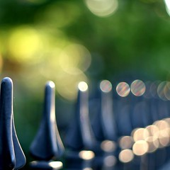 Finding confusion is not hard, organizing it to make sense is something else (Maureen F.) Tags: light shadow colors bokeh circles confusion ironfence hbw mywinners haveabeautifulday happybokehwednesday beautifularrayofbokeh obramaestra