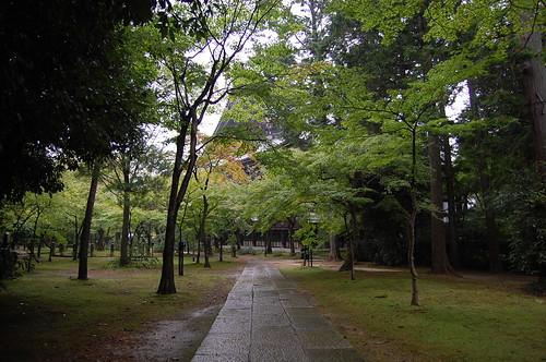 Shinnyodo