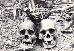 Two Skulls Viet Nam (eks4003) Tags: dead skulls jungle marines nam recon