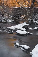 Winter Light on Mugdock Bridge (Gavin Ritchie) Tags: park uk winter snow scotland frost britain glasgow stirling mugdock mugdockcounrtypark