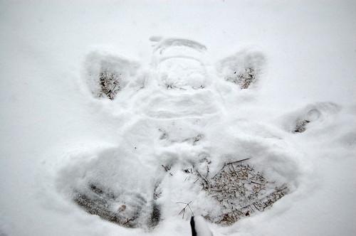 Snow Angel III