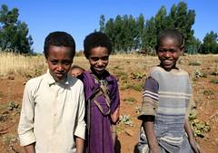 Meket escarpment trek 094 (MikeManning) Tags: travel ethiopia 2008 rtw wollo tesfa meket