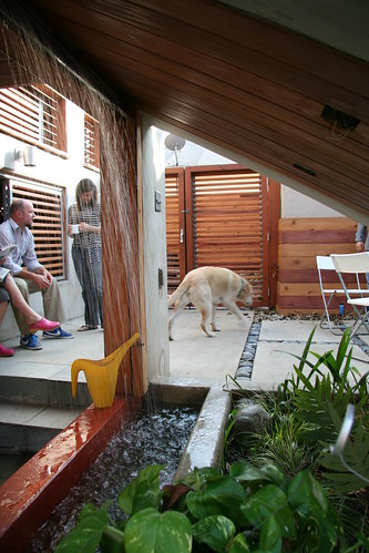 california house green architecture modern design losangeles labradorretriever renovation remodel stucco sustainable addition sustainability renewable eaglerock dwelling losangelesarchitecture