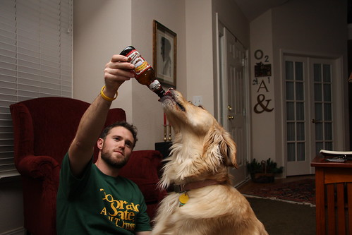 Dog beer by AMagill, on Flickr