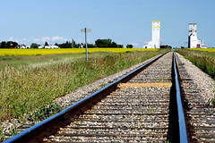 Prairie twins - Saskatchewan (John H Bowman) Tags: canada vanishingpoint july blueskies saskatchewan 2008 canola railroadtracks grainelevators grainstorage canon24105l canolafields july2008 rubyphotographer