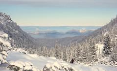 Snow & Sun in the Rila Mountains (John Spooner) Tags: trees snow sunshine bulgaria rila valley creativecommons snowshoeing rilamountains maliovitsa
