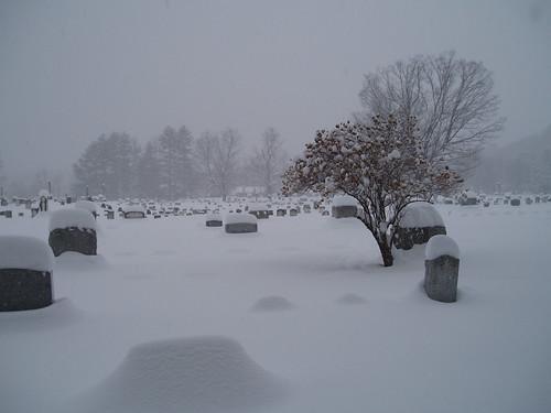 Cemetery 05