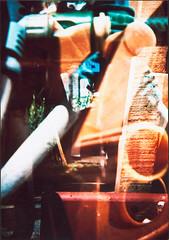Manguera (Fiskal) Tags: procesocruzado holga135 peliculavencida