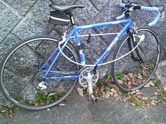 Bike Check #5