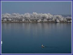 Reka (.M) Tags: zima priroda reka plavo mygearandme ringexcellence musictomyeyeslevel1 flickrstruereflection1