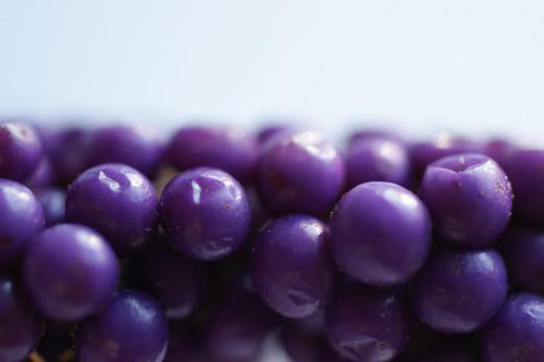 purpleballs