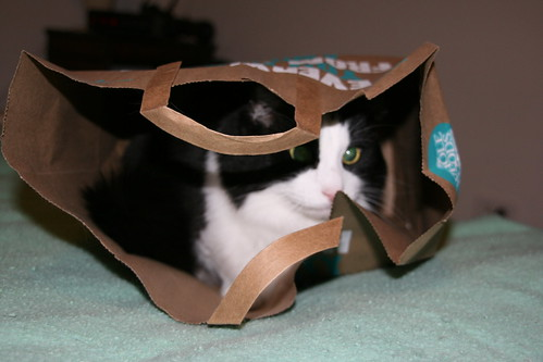 Arby in a bag