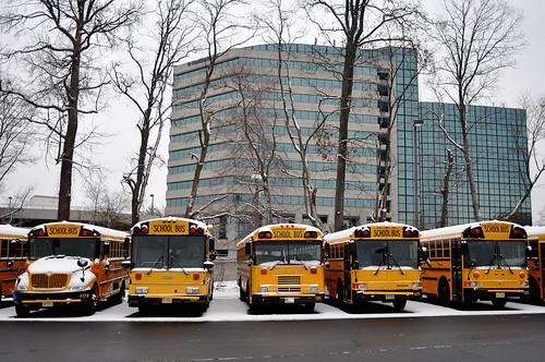 schoolbuses1