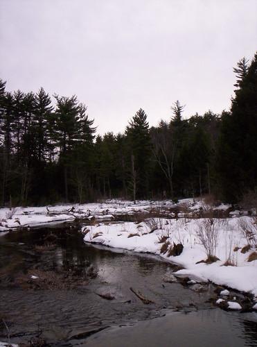 beaver brook 2009 014