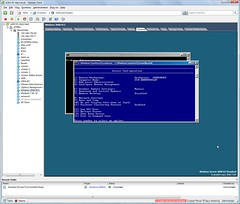 Windows 2008 R2 in a VM