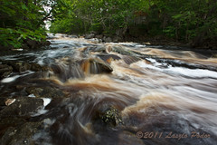 Sable River, Nova Scotia, Canada (laszlofromhalifax) Tags: canada water river movement novascotia slowshutter getty flowing freshness sableriver