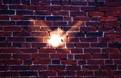 sunspotted wall (alankin) Tags: light 15fav philadelphia buildings nikon pennsylvania d70s 1870mmf3545g philly walls nikkor mountairy caustics 50views mtairy redbrick sunspots germantownavenue utatathursdaywalk niknala utatathursdaywalk32 24nov2006 1100082cmu