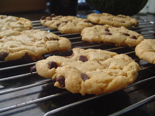Dreena's Vegan Chocolate Chip Cookies!