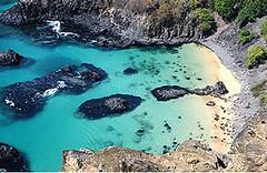 Baía dos Porcos (Bruno LC) Tags: praia beach porcos morro doisirmaos noronha baia