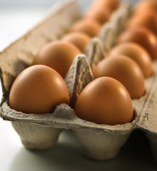 Brown Eggs2 (fhansenphoto) Tags: food brown eggs organic