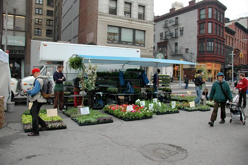 Oak Grove Farms, Union Square Greenmarket